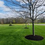 Rochester Lawn Care, Landscaping and Landscape Design