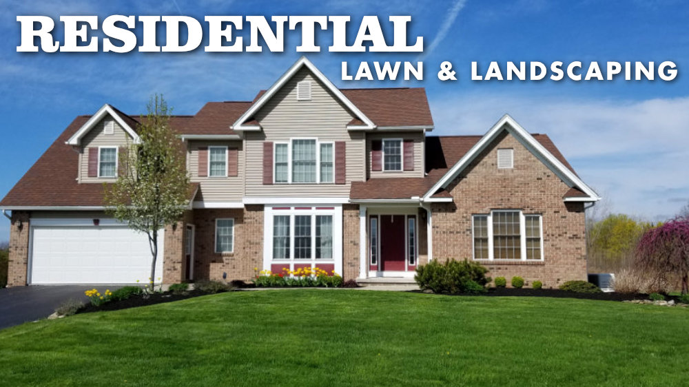 Residential Lawn Care and Landscaping